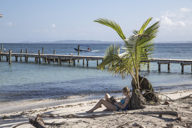 Woman on a beach, resting against a palm tree and reading