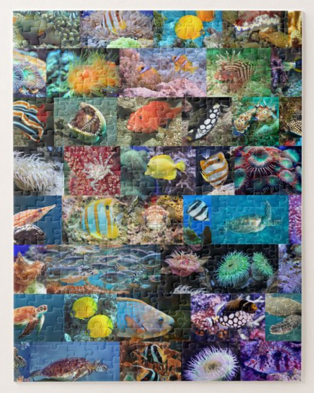 Marine fish and animals in coral reefs, puzzle for age 8, 252 pieces