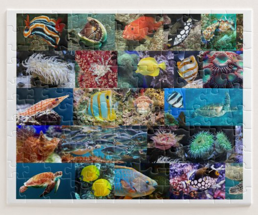 Coral reef life, marine fish and animals, puzzle for age 6, 110 pieces
