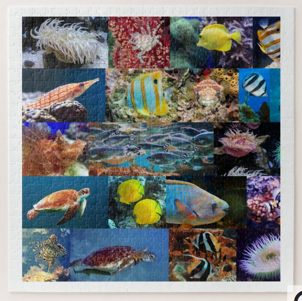 Marine life (fish and animals) in coral reefs, puzzle for age 11,. 676 pieces
