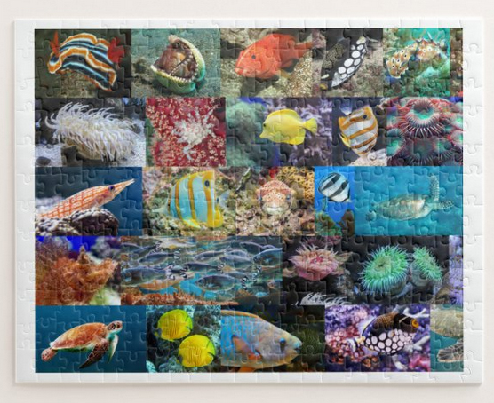 Marine life in coral reefs, puzzle for age 8, 252 pieces